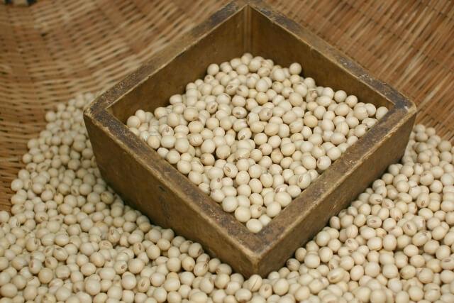 バストアップ大豆