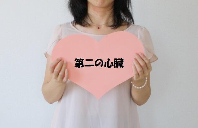 ふくらはぎ第二の心臓